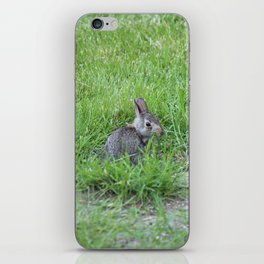 BunBun is watching iPhone Skin