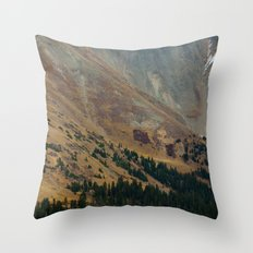 warm valley Throw Pillow