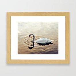 On Golden Pond Framed Art Print