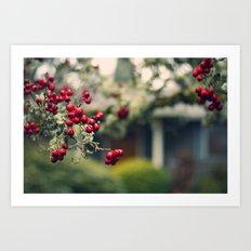 Oregon (winter)  Art Print