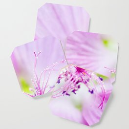 Purple Flower Coaster