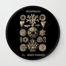 """""""Hexacoralla"""" from """"Art Forms of Nature"""" by Ernst Haeckel Wall Clock"""