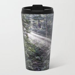 Muir Woods Crepuscular Rays Metal Travel Mug