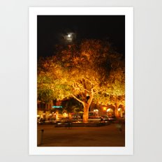 A night time tree in moonshine Art Print