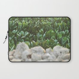 Nature photography, home furnishings, fine art, kitchen wall decor, South Italy, Sicily, Apulia, Laptop Sleeve