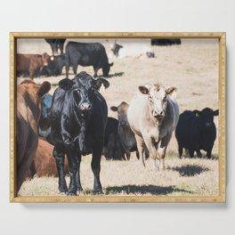 Cow portrait Serving Tray
