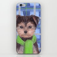 yorkie iPhone & iPod Skins featuring Yorkie Poo in Scarf  by KAZUMI