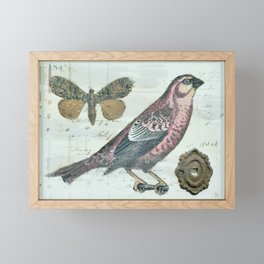 Vintage boho and bird Framed Mini Art Print