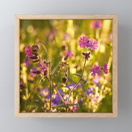 Summer Dream Wildflowers Meadow #decor #society6 Framed Mini Art Print