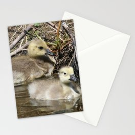 Goslings Stationery Cards