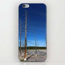 Lodgepole Pines In Geyser Basin iPhone Skin