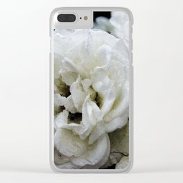 Eclipsed Pangaea Studios Clear iPhone Case