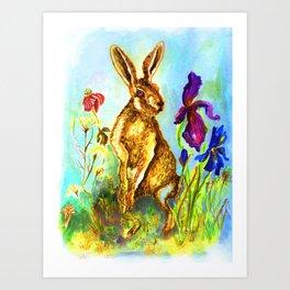 Hase auf der Wiese, Rabbit on the lawn. Art Print