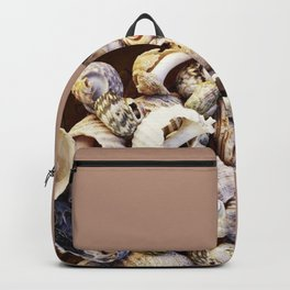 Shell Collection Backpack