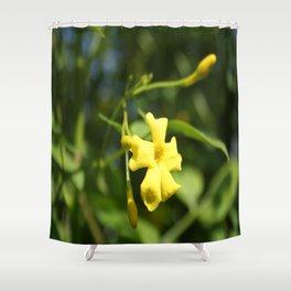 Carolina Jasmine Single Bloom In Sunlight Shower Curtain