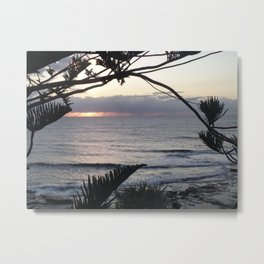 Peeping Through- Sunrise Caloundra Metal Print