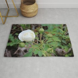 White Rose Bud Rug