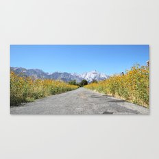 Yellow Lane Canvas Print