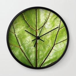 TROPICAL GREEN LEAF WITH  DARK VEINS DESIGN ART Wall Clock