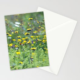 Summer Field Killington Vermont Stationery Cards