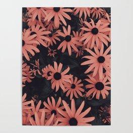 Peach SunFlowers Poster