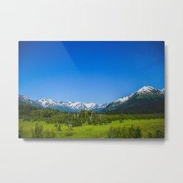 Alaskan Mountain Range Metal Print
