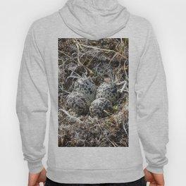 Bird Nest (Pacific Golden Plover) Hoody