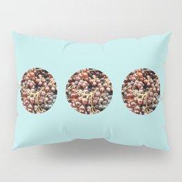 Red Grapefruit Pillow Sham