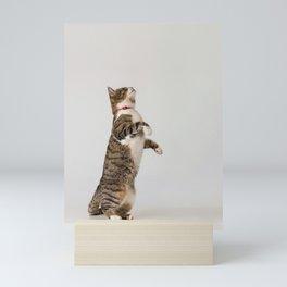 active cat playing Mini Art Print