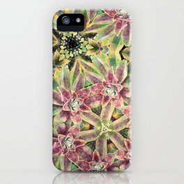 Green and Pink Succulent iPhone Case
