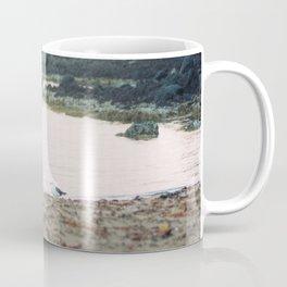 Coles Bay Sunset Seagull Coffee Mug