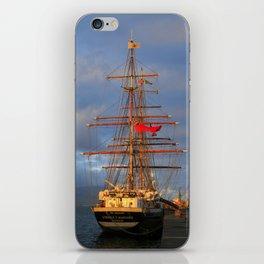 Stavros S Niarchos iPhone Skin