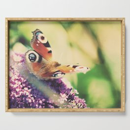"""""""I only ask to be free. The butterflies are free."""" ~ Charles Dickens  Serving Tray"""