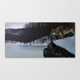 Artic time Canvas Print