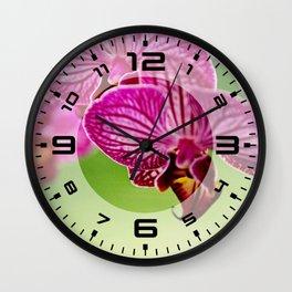 Close up Orchid #4 Wall Clock