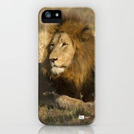 CW-002 Male Lion iPhone Case