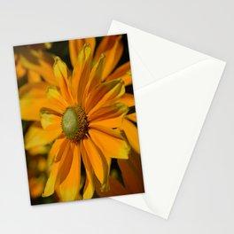 Sunshine in my Garden Stationery Cards