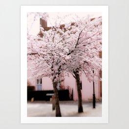 Village In Blossom Art Print