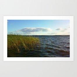 Windy Lake Art Print