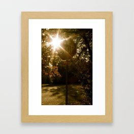 Stoplight  Framed Art Print