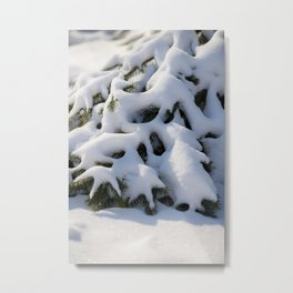 Winter nature artwork | fine art photo print in the netherlands | nature and travel photograpy Metal Print