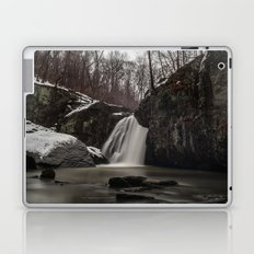 Falling Branch  Laptop & iPad Skin