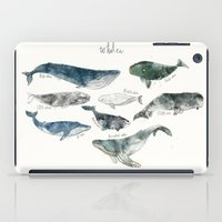 water iPad Cases featuring Whales by Amy Hamilton