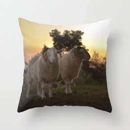 Evening on a countryside Throw Pillow