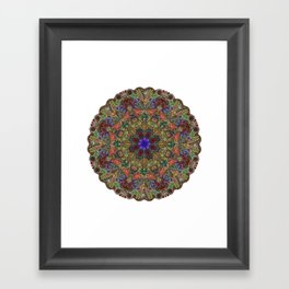 Hallucination Mandala 1 Framed Art Print