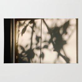 A Shadowy Shade Rug