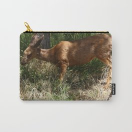 Mule Deer At Zion Park Carry-All Pouch