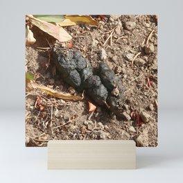 Watercolor Poop, Racoon 01, Lily Lake, RMNP, Colorado Mini Art Print