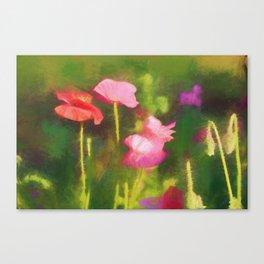 Poppies in Chalk Canvas Print