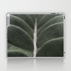 Money Plant Laptop & iPad Skin